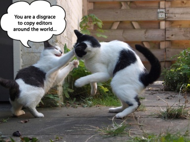 catfight2